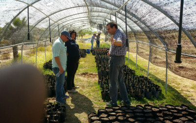 South Mountain Community  College Interns at JatroBiofuels farm